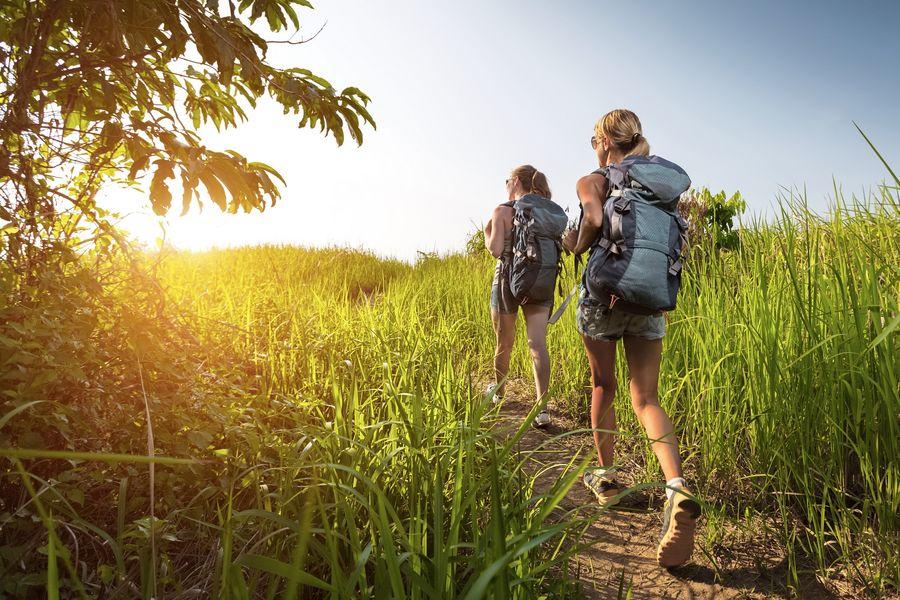 Wanderbegleitung suchen